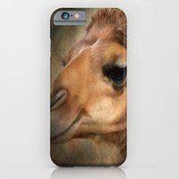 iPhone & iPod Case featuring The Camel's Secret by Barbara Gordon Photography