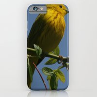 Yellow Warbler iPhone 6 Slim Case