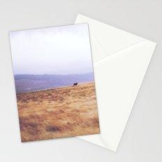 Mini Horse Stationery Cards