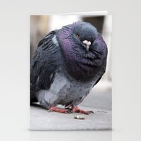 Mr Pigeon Stationery Cards
