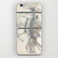 rose-Fish-bone dinosaur iPhone & iPod Skin