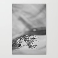 Less And Less Canvas Print