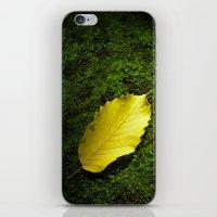 yellow autumn leaf I iPhone & iPod Skin