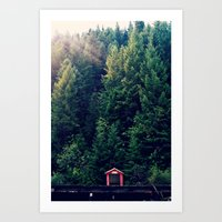 Red in Woods Art Print