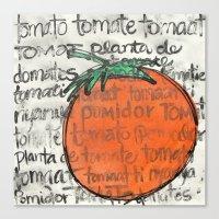 toma tomate Canvas Print
