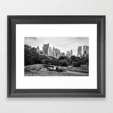 New York Sleeper Framed Art Print