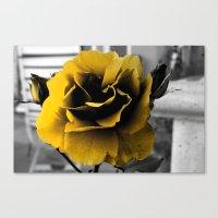Curse Of The Golden Flow… Canvas Print