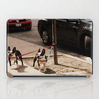 Boston Terriers ~ amped up for action! iPad Case