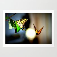 Butterfly dance Art Print