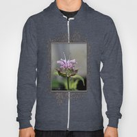 Bee Balm named Panorama Lavender Hoody