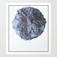 Camellia blu Art Print
