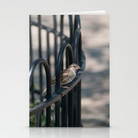 What Are You Looking At Stationery Cards