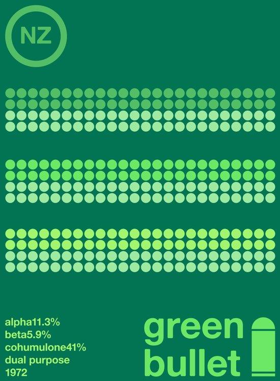 green bullet single hop Canvas Print
