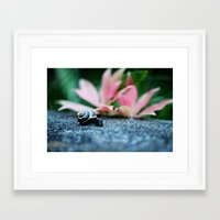 Enjoy the Little Things Framed Art Print