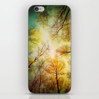 Rest in the forest iPhone & iPod Skin