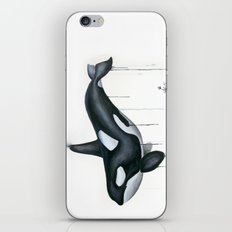 Orca 1 iPhone & iPod Skin