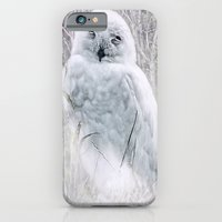 iPhone & iPod Case featuring Snowy Owl by Elaine C Manley