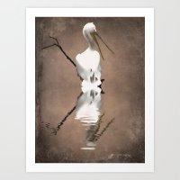 Pelican Perch 2 Art Print