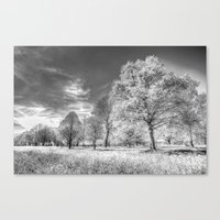 The Farm Of Dreams Canvas Print