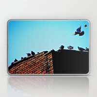 Looking for a Place to Land Laptop & iPad Skin