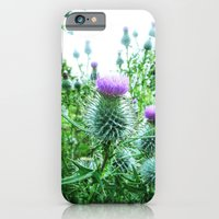iPhone & iPod Case featuring thistle's by seb mcnulty