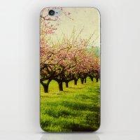 Orchard play iPhone & iPod Skin