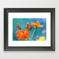 Ginger Dahlias - Why Not… Framed Art Print