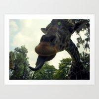 Giraffes Are Silly. Art Print