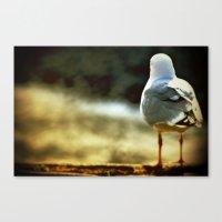 Sitting, Waiting, Wishin… Canvas Print
