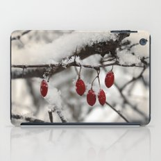 Finding Red iPad Case