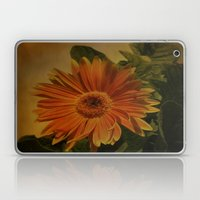 The Beauty Of Nature Laptop & iPad Skin