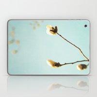 Magnolia Skies Laptop & iPad Skin