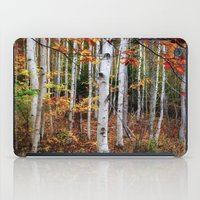 Acadia Fall color iPad Case