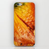 iPhone & iPod Skin featuring The Colors Of Autum by Mimulux