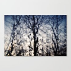+a soft of antlers; dancers, refracting light [ex. a] Canvas Print