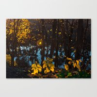 Something Magic Canvas Print