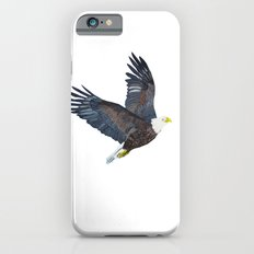 Bald eagle in flight iPhone 6s Slim Case