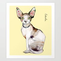 Ederba the sphynx Art Print