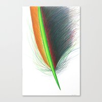 Feather #9 Canvas Print
