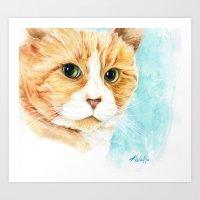 Stan The Grumpy Cat Art Print