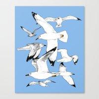Flying around Canvas Print