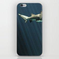 Shark iPhone & iPod Skin