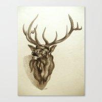 Elk Portrait - In The Ro… Canvas Print