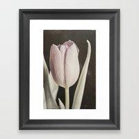 Vintage Tulip Framed Art Print