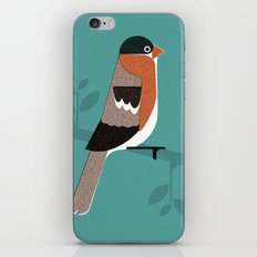 Raitán (Asturian Robin) iPhone & iPod Skin