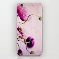 I Love Pink Poppies iPhone & iPod Skin