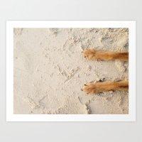 beach paws Art Print
