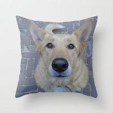 Treat? Throw Pillow