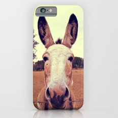 a curious donkey. iPhone 6 Slim Case