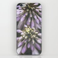 Hosta iPhone & iPod Skin